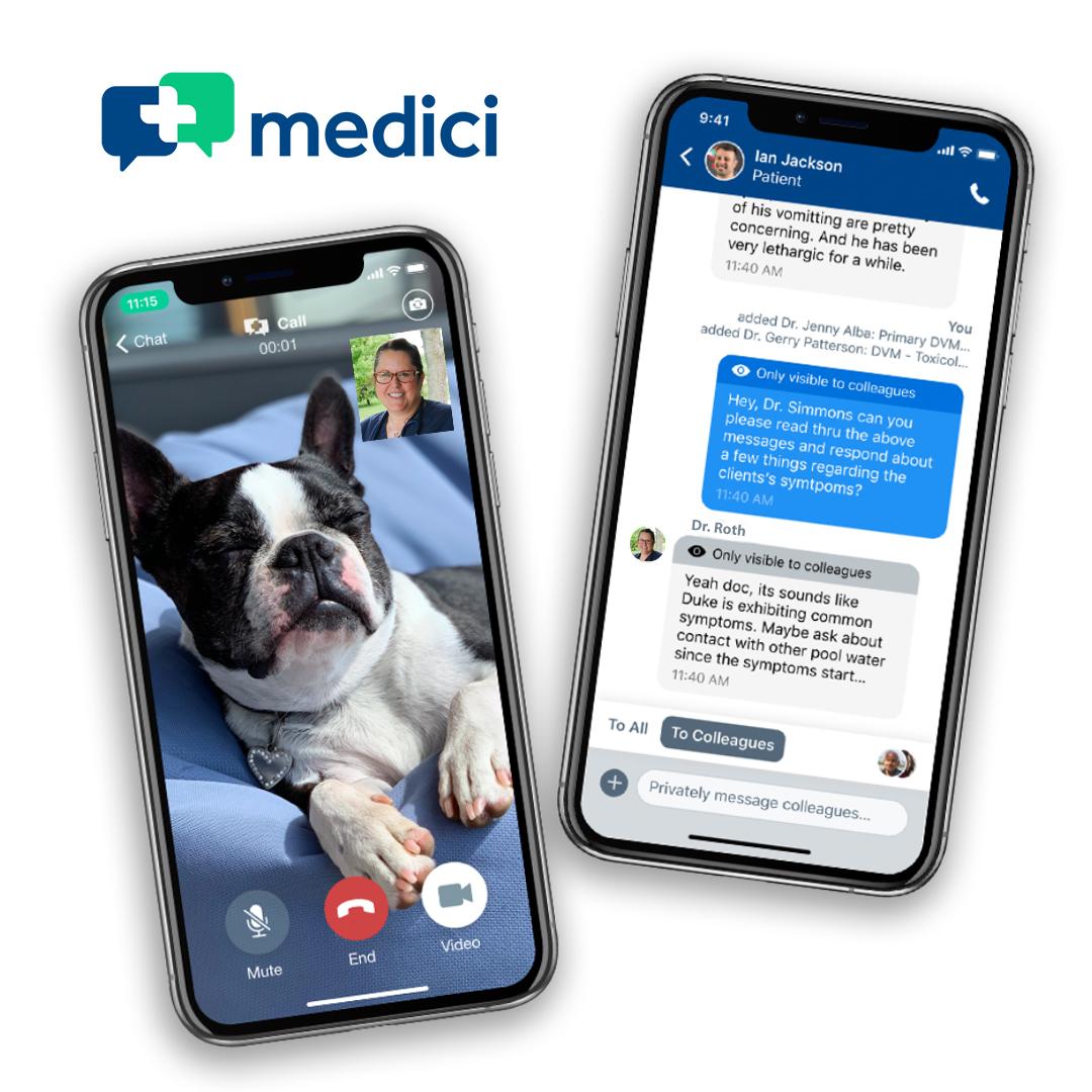 Medici_Blank